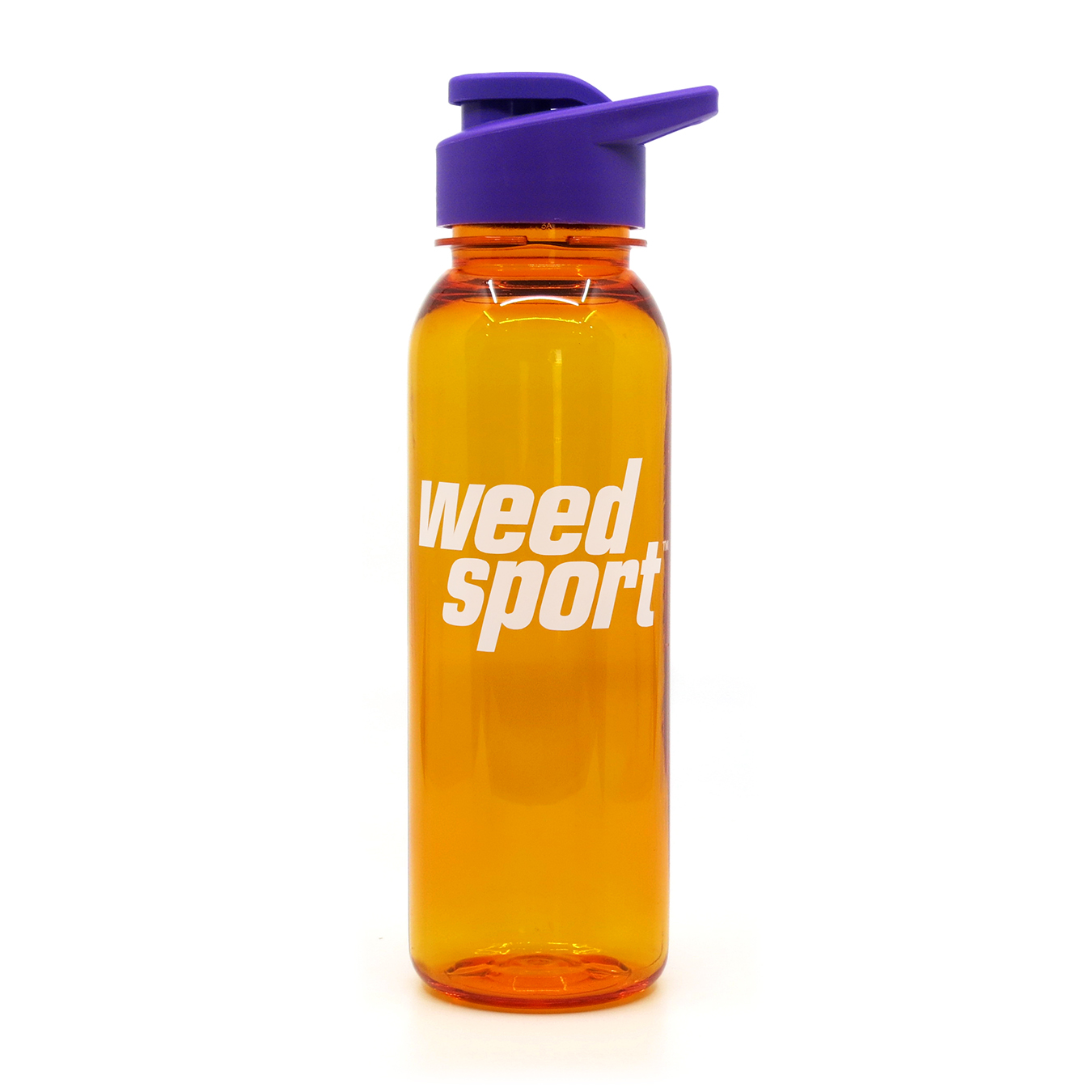 Water Bottle (24oz)